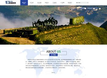胜利石油网站案例